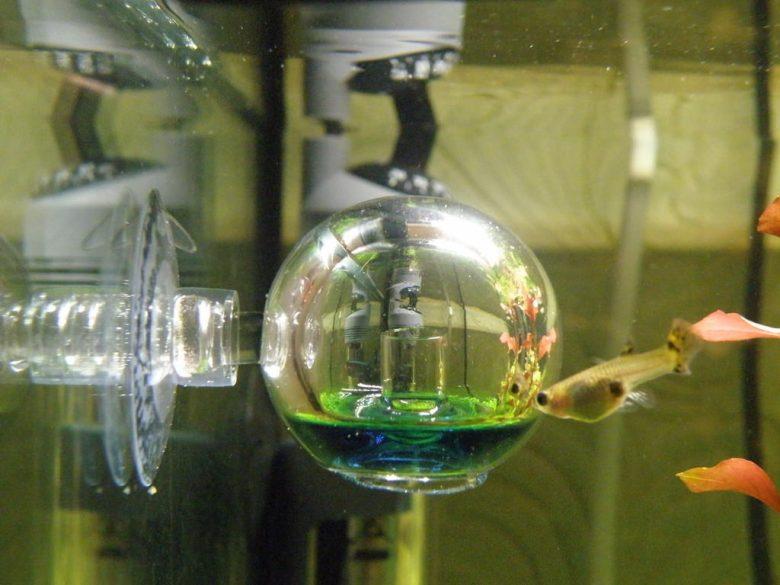 Тест СО2. Измерение концентрации углекислого газа в аквариуме.